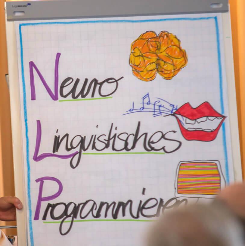 Kostenloses NLP Infoseminar - Neurolinguistisches-Programmieren - Pfalz NLP Academy